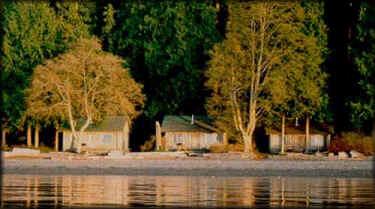 Beach Haven Resort Northern Washington Cabins